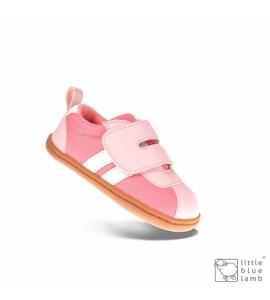 Bax Pink
