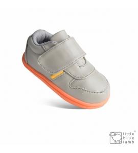 Belo Grey