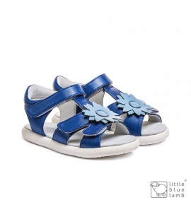 rossie blue, revive 22-30