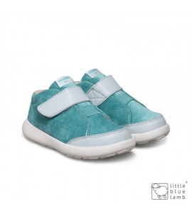 Tomba Blue