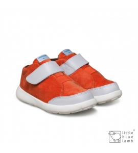 Tomba Orange